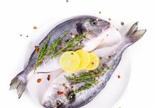 קייטרינג למהדרין – מאכלים מן המהדרין